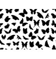 butterfly seamless isolated vector image vector image
