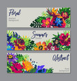 collection tropical plants and flowers vector image vector image