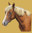 colorful hand drawing horse portrait-8 vector image