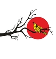 Golden Oriole perched on a branch flat vector image vector image
