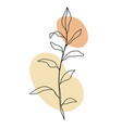 minimal card floral art design vector image vector image