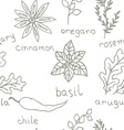 Seamless Doodle patterns herbs vector image