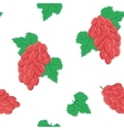 Seamless Pattern with Bunches of Red Grapes on vector image vector image