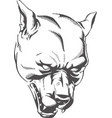 silhouette angry dog head pitbull isolated contour vector image
