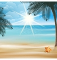 Tropical beach with Starfish design template vector image