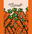 vegetable carrot fresh healthy food poster vector image vector image