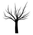bare tree winter symbol icon design vector image vector image