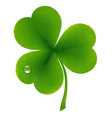 Clover leaf vector