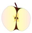 cut apple vector image vector image