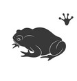 earth frog isolated frog on white background vector image vector image