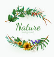 green floral banner with isolated on white vector image