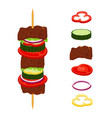 kebabs on skewers roasted meat - lamb pork vector image vector image