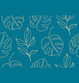 monstera tropical jungle seamless pattern vector image