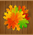 set maple leaves on wooden background vector image vector image