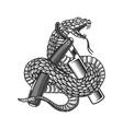 snake on barber razor design element for poster
