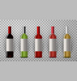 wine bottles with labels realistic vector image