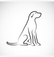 a labrador retriever dog on a white background vector image vector image