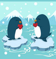 couple penguin holding heart greeting card vector image vector image