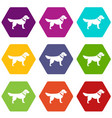 dog icon set color hexahedron vector image vector image