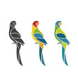 Parrot design on white background