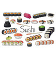 set of japan sushi collection isolated on white vector image