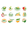 vegetarian and vegan organic food icons vector image vector image