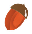 isolated nut icon vector image