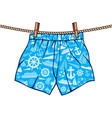 boxer shorts hanging on line vector image