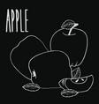 chalkboard colorful ripe apple fruit vector image