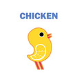 domestic bird chicken isolated vector image vector image