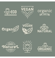 Fresh And Natural Food vector image