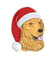 golden retriever wears christmas hat vector image