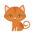 orange small cat sitting green eyes vector image vector image