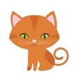 orange small cat sitting green eyes vector image vector image