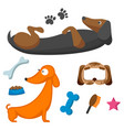 playing dog character funny purebred puppy comic vector image