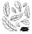 set hand drawn feather ink vintage vector image