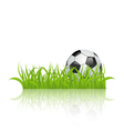 Soccer ball on grass isolated on white background vector image vector image