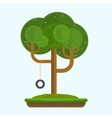Swing on tree in park vector image