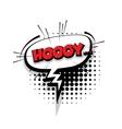 Comic text hoy sound effects pop art vector image