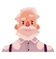 Grey haired old man face angry facial expression vector image vector image