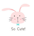 little bunny so cute background vector image