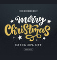 merry christmas sale web banner template vector image