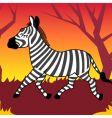 zebra animal vector image vector image