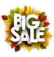 big sale background with colorful leaves vector image