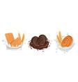 cookies milk chocolate splashes with biscuits vector image vector image