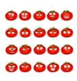 cute cartoon tomato smile with many expressions vector image vector image