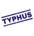 scratched textured typhus stamp seal vector image