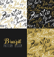 Travel brazil south america rio city pattern gold vector image vector image