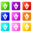 tulip icons 9 set vector image vector image