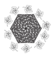 Umbrella and Leaves in zentangle style vector image